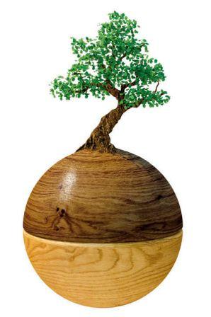 umweltschutz als Firmen-Philosophie